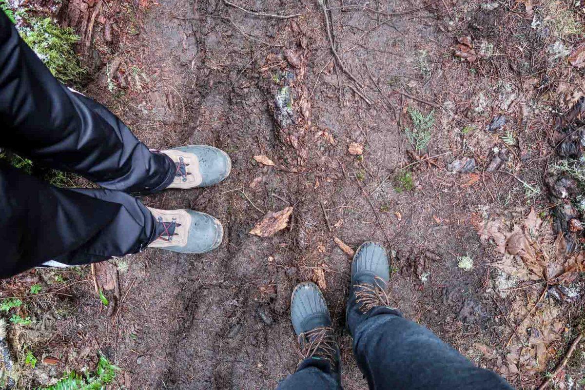 McCredie Hot Spring Muddy Trail