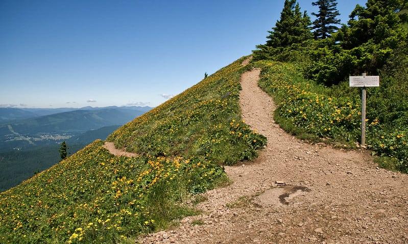 Hiking around Dog Mountain Trail Hikes in Washington State