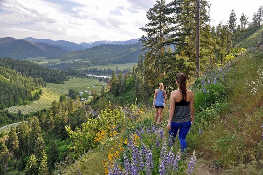 Hiking around Sauer's Mountain Best Hikes in Washington State