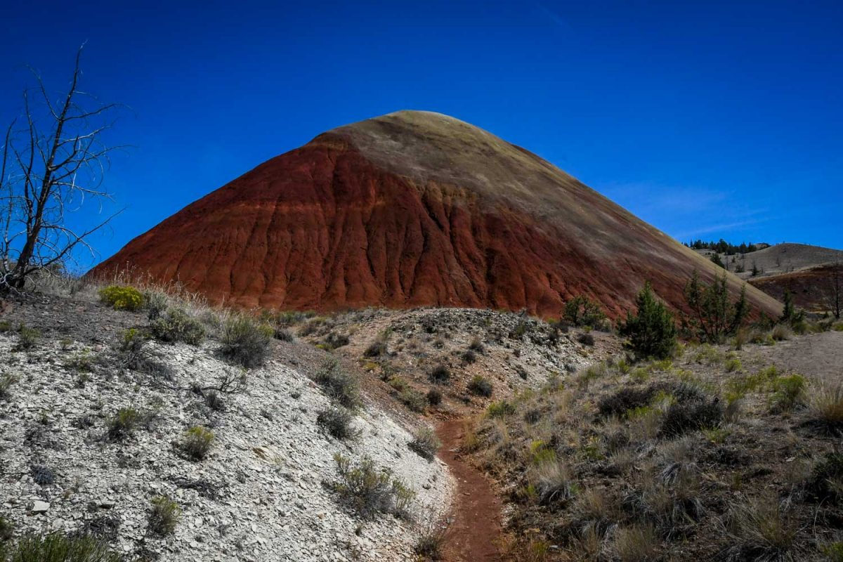 Painted Hills Oregon | Red Scar Knoll Trail