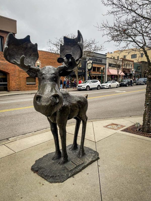 Things to Do In Coeur d'Alene | Mudgy Moose Statue