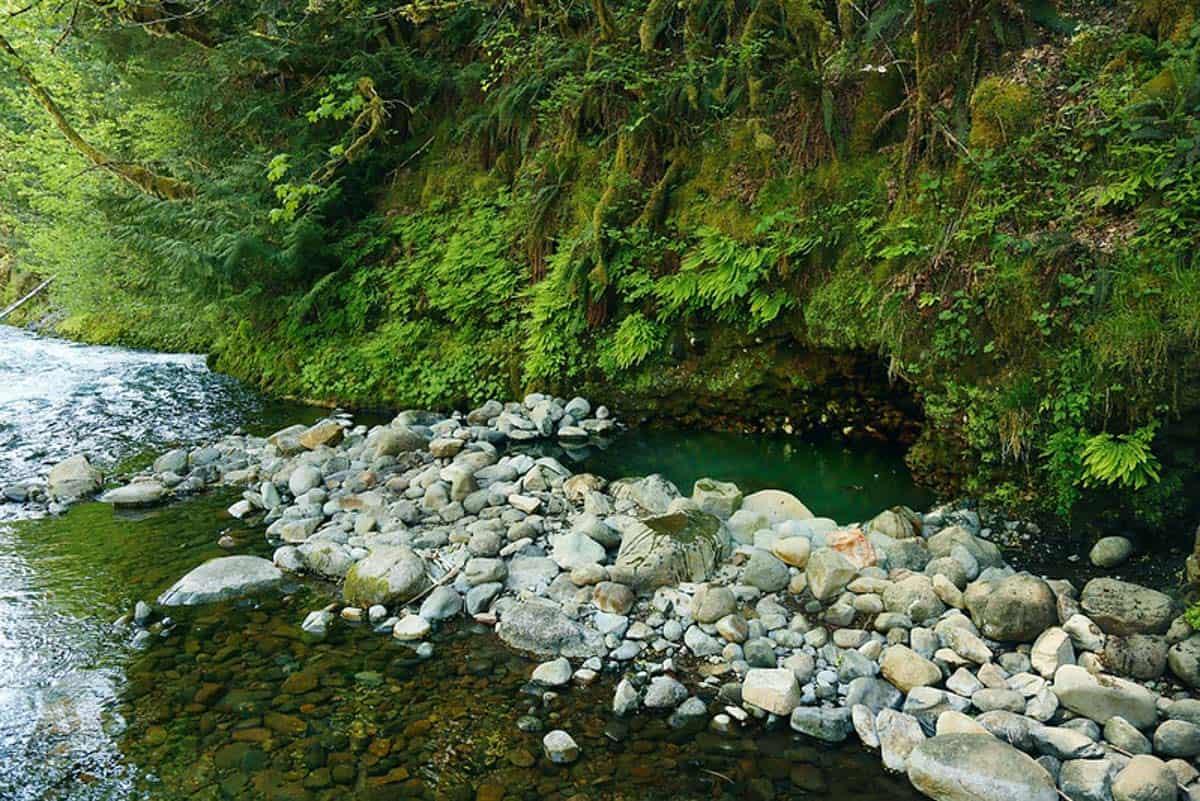 Hot Springs in Oregon: Bigelow Hot Springs