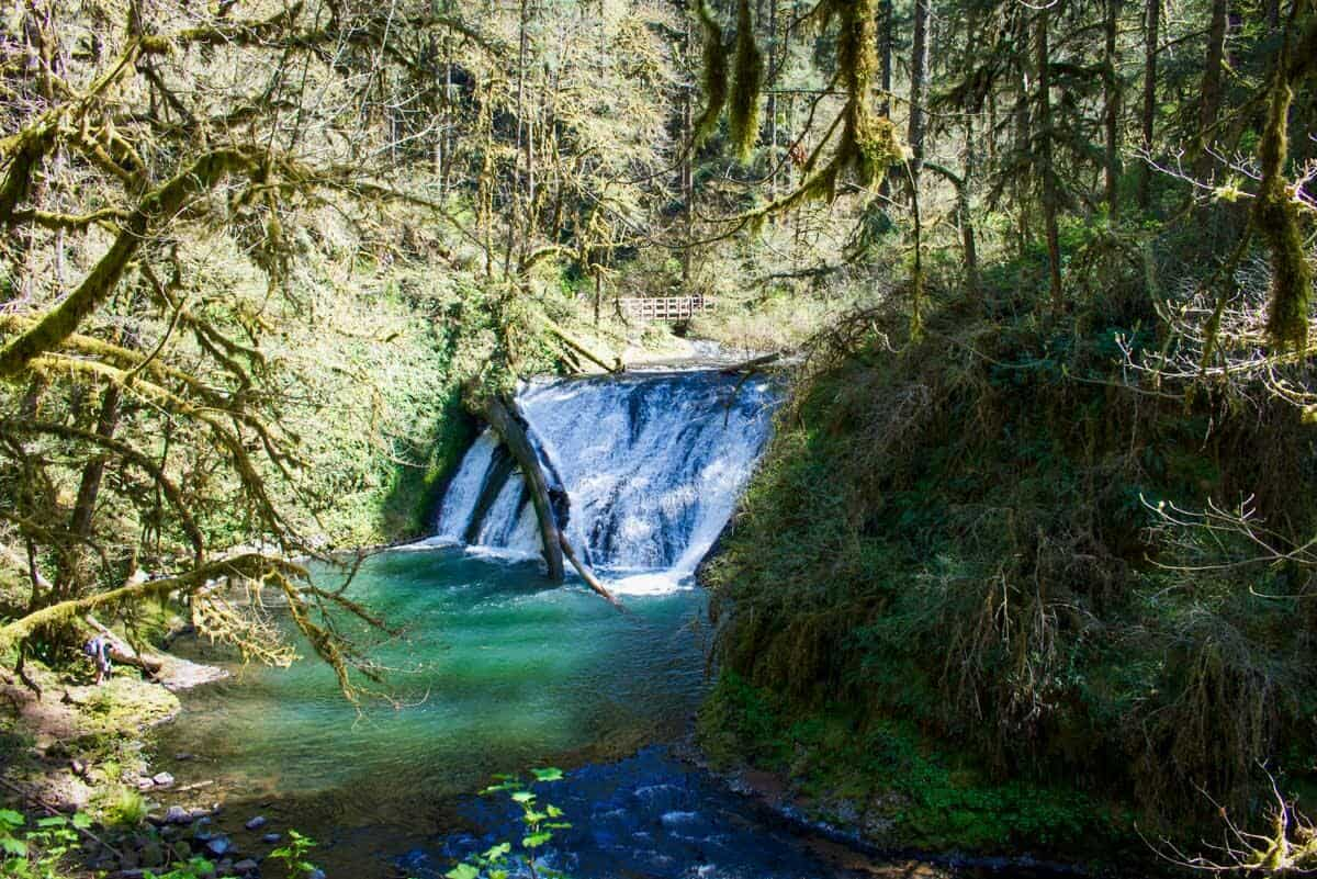 Silver Falls State Park | Lower North Falls