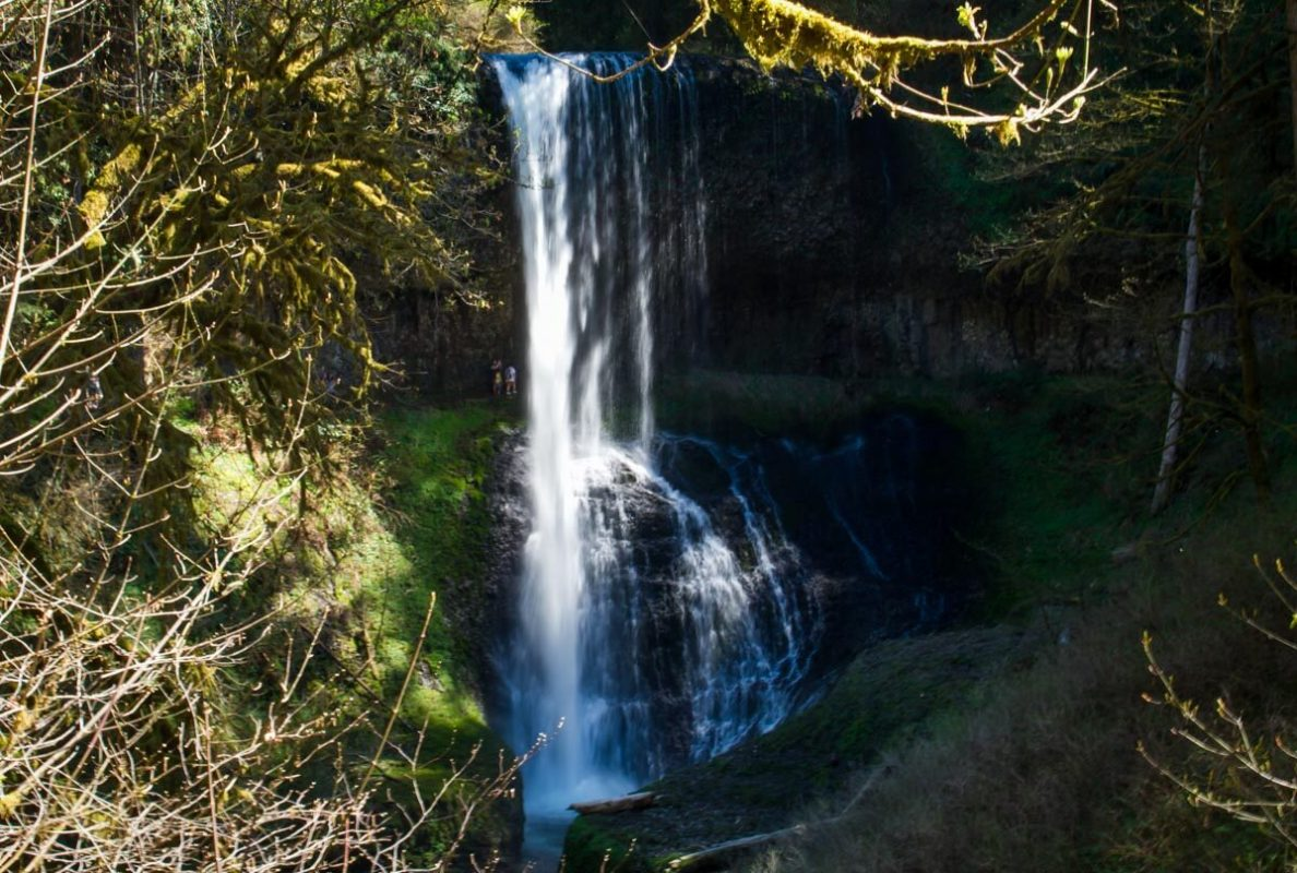 Silver Falls State Park | Middle North Falls